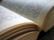 Dictionary1