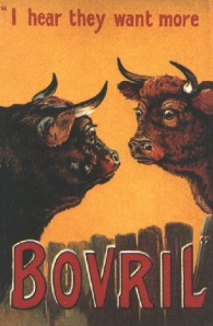 Bovril Steer ad card