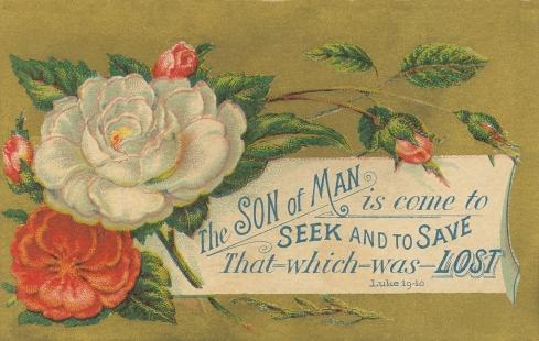Card Luke