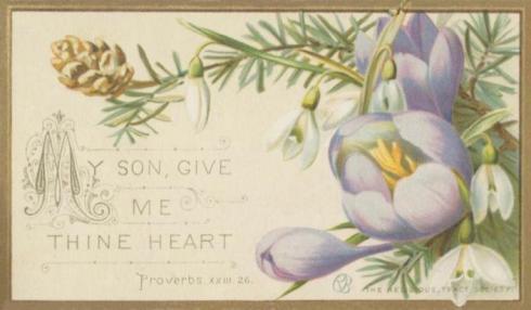 Card Proverbs