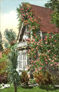 Postcard Rose Covered Cottage 1915 ed