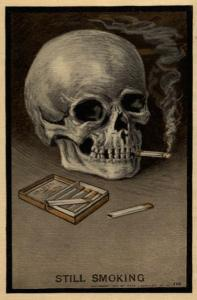 Skull undated
