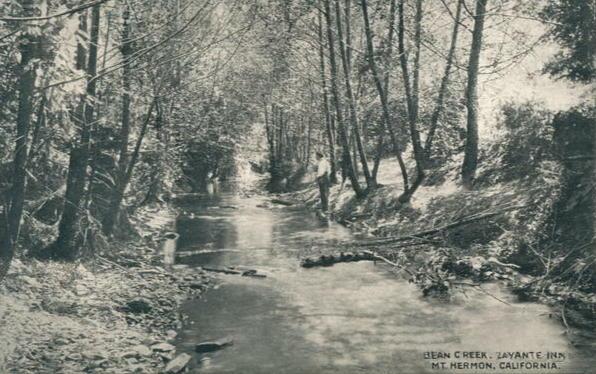 Bean Creek at Mount Hermon, 1910.