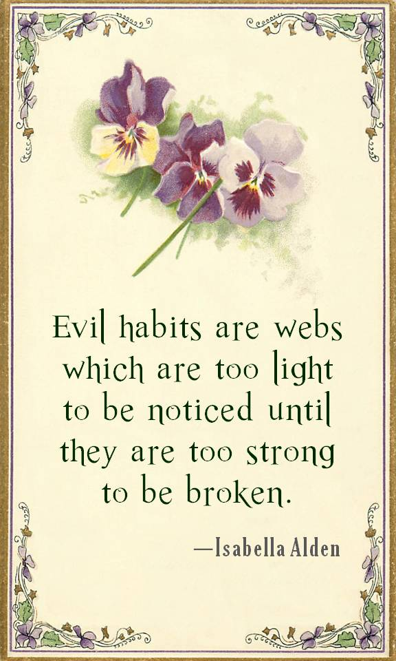 Evil habits are webs which are too light to be noticed until they are too strong to be broken.